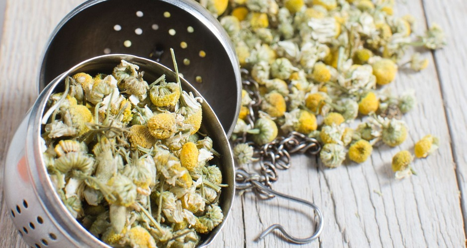 16272156 - dried chamomile flowers with colander on wooden plate