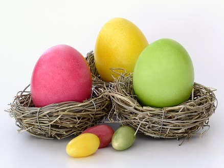 boiled-eggs-bright-cheerful-372173